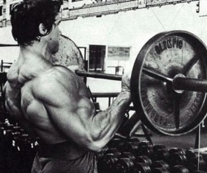 Biceps-arnold-programme-superset