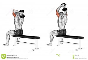 extension triceps haltères